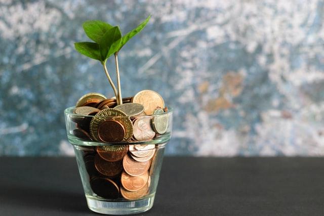 plante qui pousse dans un verre rempli de pièces