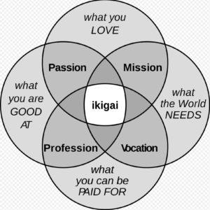 4 cercles (représentant chacun ce que tu aimes, ce dont le monde à besoin, ce en quoi tu crées de la valeur et ce en quoi tu es bonne) qui se coupent et donc l'interection représente l'ikigai